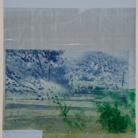 David Freed, Blue Heat, 2008-2009, Woodblock, etching and pastel on paper, 30 x 22 inches