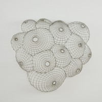 Carlton Newton, Untitled, 2009, Stainless steel wire, 25 x 29 x 7 1/4 inches