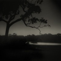 Sally Mann, Weyanoke, Louisiana, 1998/2010, Gelatin silver print, 20 x 24 inches, Ed. 10