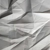 Plot, 2011, archival pigment print, 45 x 40 inches