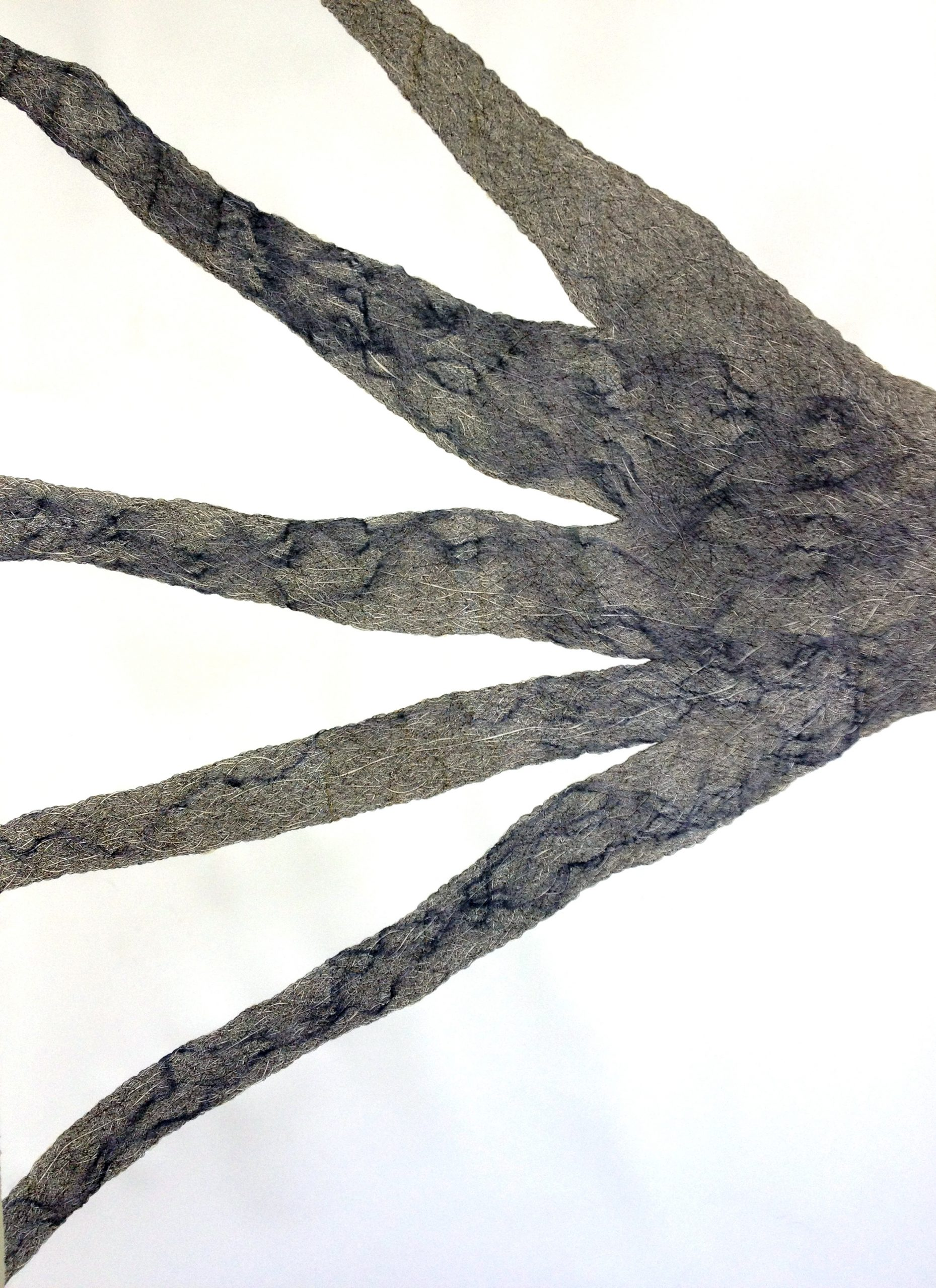 """""""Imbricative: Drawings by Jack Wax"""" at VCUarts Anderson Gallery"""
